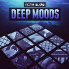 Niche deep moods 1000 x 1000