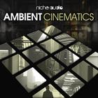 Niche ambient cinematics 1000 x 1000