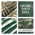 Rv vinatge synth bass electronica 1000 x 1000
