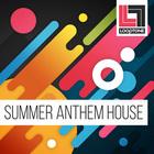 Looptonesummeranthemhouse bigleads classichousesounds 1000x1000