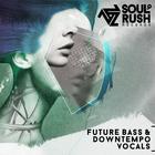 Futurebassv3