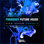 Forbidden future house   artwork