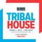 Robbie rivera   tribal house samples